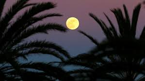 FULL SUPER MOON JANUARY 31